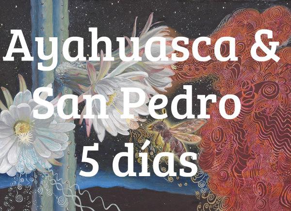 Retiro de Ayahuasca 5 días
