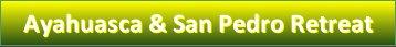 Ayahuasca & San Pedro Retreat