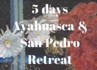 Ayahuasca & San Pedro Retreat