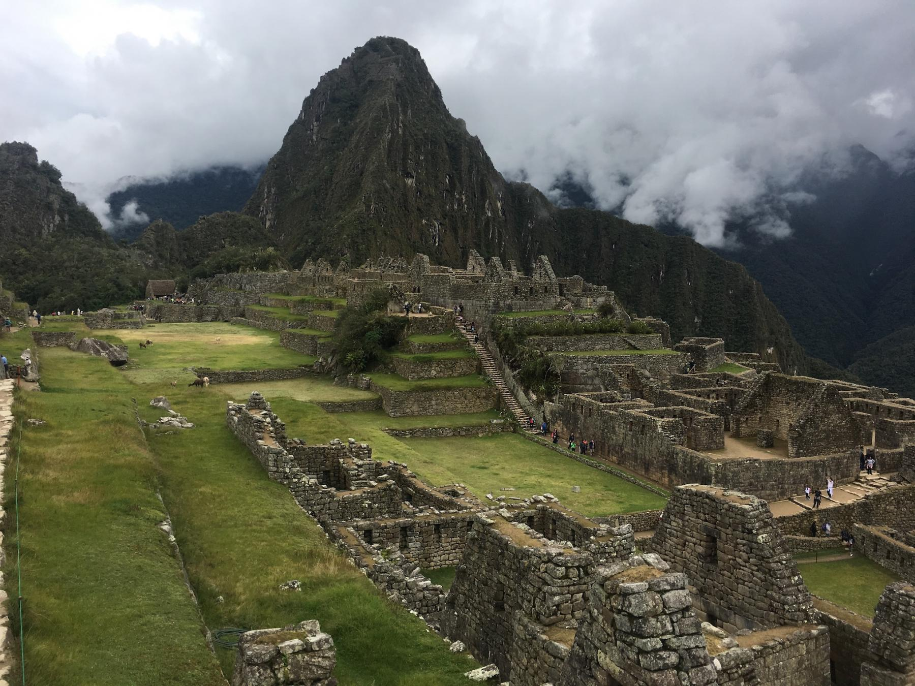 Machu Picchu Ayahuasca Retreat (6 days)